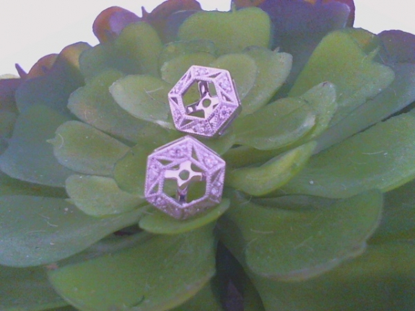 DIAMOND EARRING JACKETS by Allison Kaufman